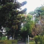IMG_20140925_005507
