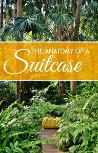 Anatomy of Suitcase