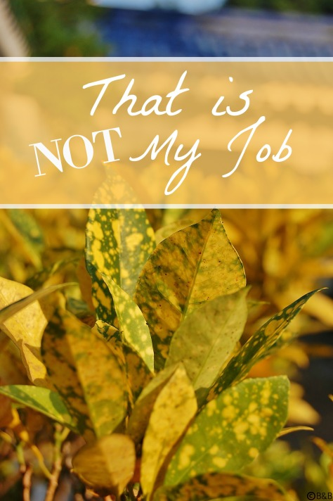 That is Not My Job: Are You Just Trying to Survive?
